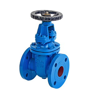2 Cast Iron Rising Gate Valve-PN16